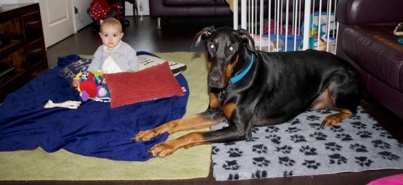 doberman and baby