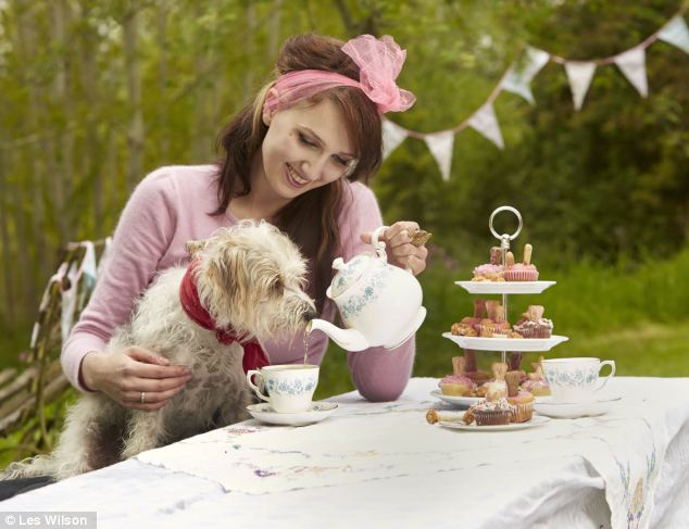 tea for dogs