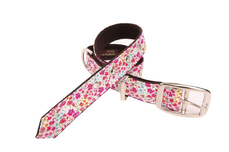 Lovemydog Liberty print collar