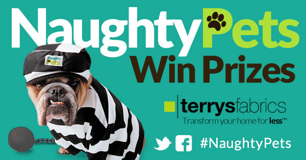 Terrys-naughty-pets